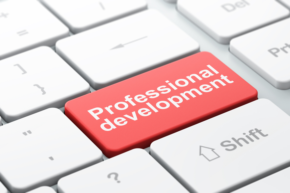 image of professional development key
