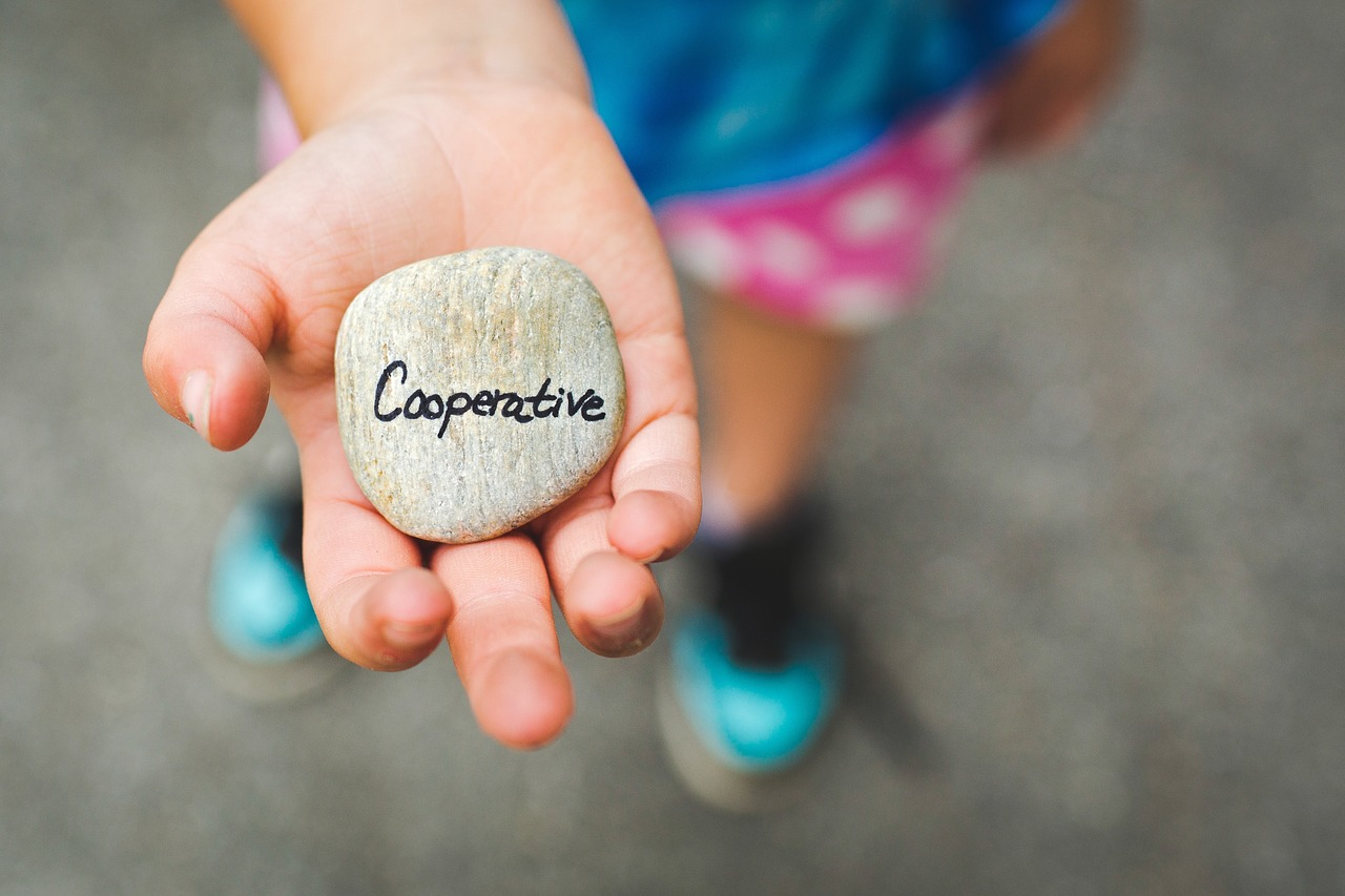 "hand holding a stone that reads ""cooperative"""